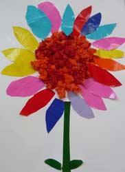 Fleurs Ecole Maternelle
