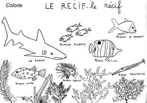 Coloriage Ecole Maternelle.Coloriage Ecole Maternelle Animaux